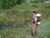 Πρόγραμμα καταπολέμησης κουνουπιών από την Περιφέρεια