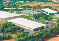 Επτά στα δέκα ξυραφάκια Bic παγκοσμίως είναι made in Greece