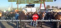 Η ΝΕ Τρικάλων ΚΚΕ καταγγέλλει την εισβολή των ΜΑΤ στη «Χαλυβουργία Ελλάδος»