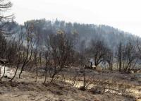 Καταβολή αποζημιώσεων για τις ζημιές από την πυρκαγιά στην περιοχή Ορθοβούνι – Μ. Κερασιά Καλαμπάκας.