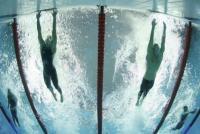 Σύντομη  ιστορία  της  κολύμβησης