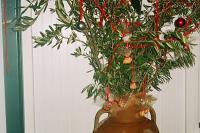 Ειρεσιώνη - (πρόγονος του χριστουγεννιάτικου Δένδρου)