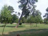Πρόγραμμα μαζικού αθλητισμού στα Τρίκαλα στο πάρκο του Αι Γιώργη
