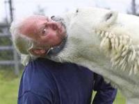 Ο παπάς κι η αρκούδα ...