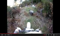 Δείτε τι συνέβη σε έναν μοτοσυκλετιστή! [video]