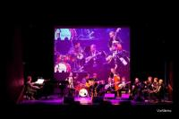 «Νύχτα μαγική, ονειρεμένη…» με τις νότες Βασίλη Τσιτσάνη από τα Τρίκαλα στη Βοστόνη!