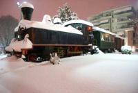 Πλήρης ανεπάρκεια του σιδηροδρόμου να αντεπεξέλθει στις πρόσφατες  χιονοπτώσεις...
