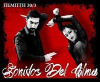 Mια μουσικοχορευτική παράσταση flamenco στα Τρίκαλα