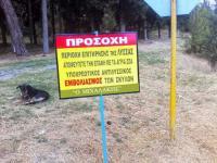 Ρίψη εμβολίων – δολωμάτων για την λύσσα σε ορεινές & ημιορεινές περιοχές των Τρικάλων