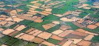 Ενημέρωση παραγωγών για την πληρωμή της δράσης 1.1 βιολογική γεωργία έτος εφαρμογής 2015