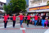 H επετειακή εκδήλωση του χορευτικού ομίλου «Μετέωρα»