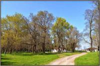 Διατηρητέο μνημείο της φύσης το δάσος της Παναγίας στο Βαλτινό