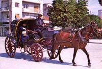 Ημέρα Χωρίς Αυτοκίνητο στα Τρίκαλα αύριο