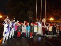 Φωταγωγήθηκε στα Τρίκαλα το υψηλότερο φυσικό χριστουγεννιάτικο δέντρο στην Ελλάδα