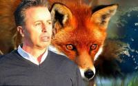 Τι ζητάει η αλεπού στο παζάρι;