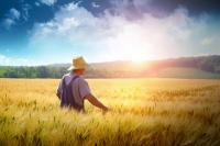 Π. Δριτσέλη : Τα αιτήματα το αγροτικού κόσμου βρίσκονται σε φάση κυβερνητικής υλοποίησης.