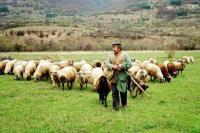 Πρόγραμμα εκπαίδευσης κτηνοτρόφων