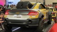 Χειροποίητο Audi TT Safari