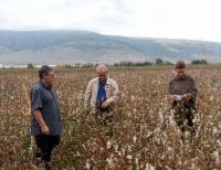Σημαντικές ζημιές στις καλλιέργειες σε Τρίκαλα και Φαρκαδόνα