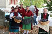 Μ.Ε.Σ. Σωτήρα Τρικάλων στο Erasmus+ Young Wine Players