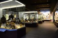 Δύο βραβεία για το Μουσείο Φυσικής Ιστορίας Μετεώρων στα Tourism Awards