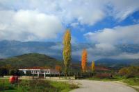 Βελτιώνει το δρόμο Πρίνου – Διαλεχτού η Περιφέρεια Θεσσαλίας