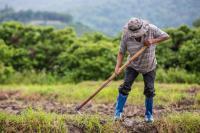 Αγρότες δύο ταχυτήτων δημιουργεί η κυβέρνηση της Ν.Δ