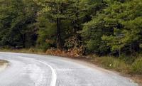 Συντήρηση του δρόμου από Παλαιοχώρι Γαρδικίου προς Αγία Μαρίνα