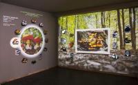 Παρουσίαση της νέας πτέρυγας του Μουσείου Μανιταριών στην Καλαμπάκα